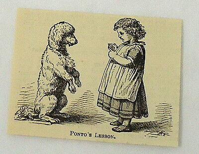 small 1882 magazine engraving ~ LITTLE GIRL GIVES DOG LESSONS