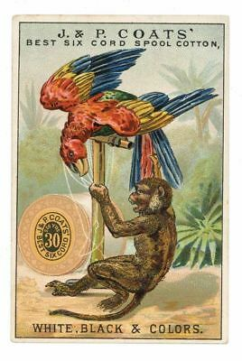 J & P COATS, Victorian Trade Card, 275, Spool Cotton Sewing Thread monkey parrot