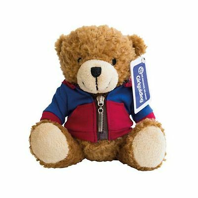 Guides Teddy Bear Wearing Hoodie Girlguiding
