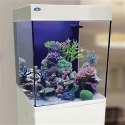 10 Gallon Cubey White Aquarium All in One Nano Fish Tank New by JBJ