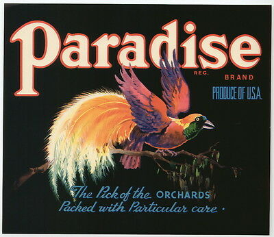 PARADISE Vintage Apple Crate Label with bird of Paradise, AN ORIGINAL LABEL