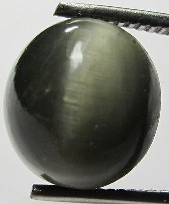 Natural Blacky Cat's eye 9.20 ct. Unheated For Ring & Pendant Cabochon SB11002