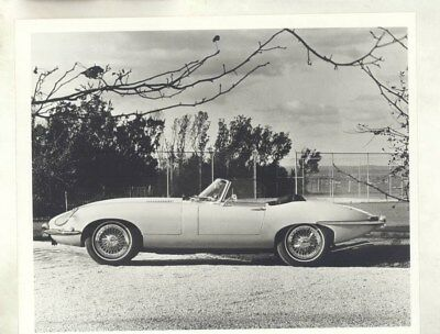 1968 Jaguar XKE Convertible ORIGINAL Factory Photograph wy5139