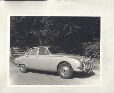 1964 ? Jaguar 3.8S S Type ORIGINAL Factory Photograph wy5159