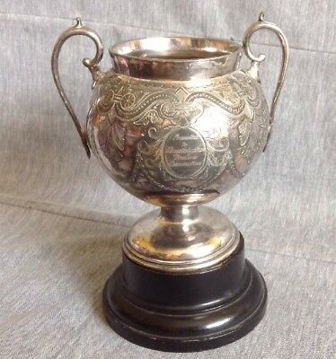 """Vintage Silver Plated Trophy Cup On Wooden Plinth. 9"""" Tall"""
