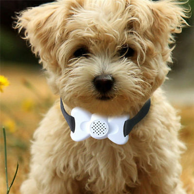 Dog Training Vibrate Collar with Sound Pet Stop Barking Control Collar Device