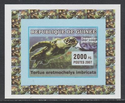 Guinea 5739 - 2007 TURTLES & FISH #1 imperf deluxe sheet unmounted mint