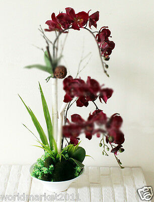 Decorations White Ceramic Vase Scarlet Butterfly Orchid Artificial Flowers