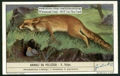 A Fox Hunting 60+  Y/O Trade Ad  Card