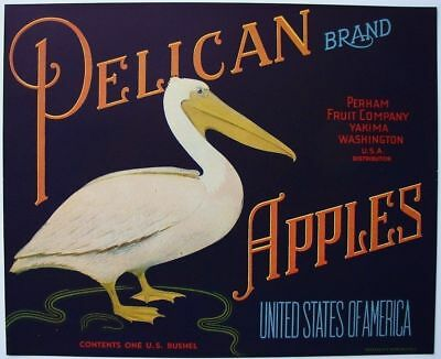 PELICAN Vintage Washington Apple Crate Label, Sea Bird, ***AN ORIGINAL LABEL***
