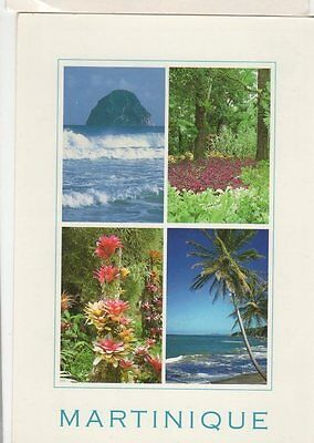 Martinique Antilles Francaises Postcard 068a