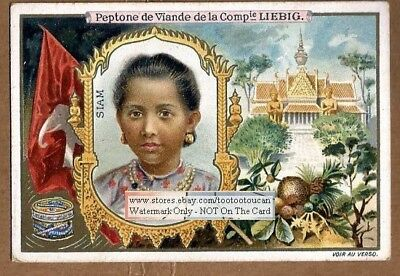 A Pretty Young Woman Of Siam Thailand c1898Trade Ad  Card