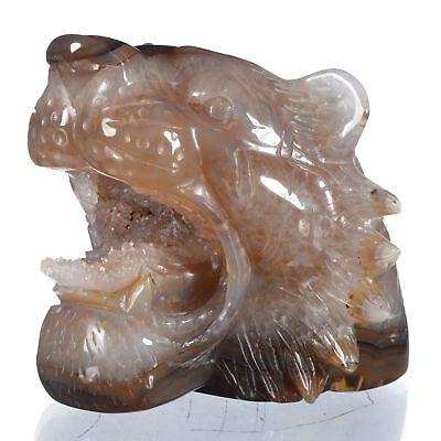 """4.88""""Natural Geode Agate Tiger Head Carving ,Collectibles#AT91"""