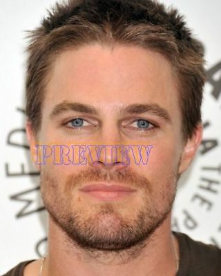 photo 8x10 - STEPHEN AMELL #0170-160422