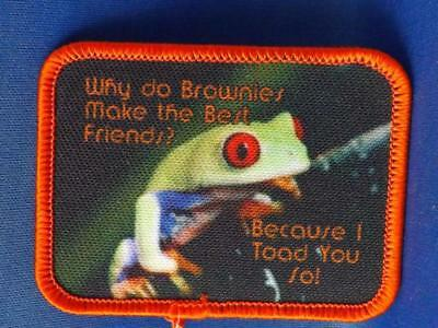 Girl Guides Patch Why Do Brownies Make The Best Friends Because I Toad You So