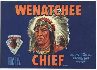 WENATCHEE CHIEF Vintage Washington Pear Crate Label, Indian *AN ORIGINAL LABEL*