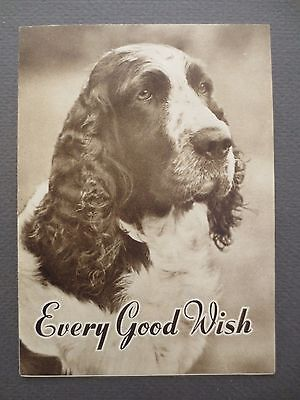 Vintage CHRISTMAS Card English Springer Spaniel Dog 1950s Every Good Wish OLD