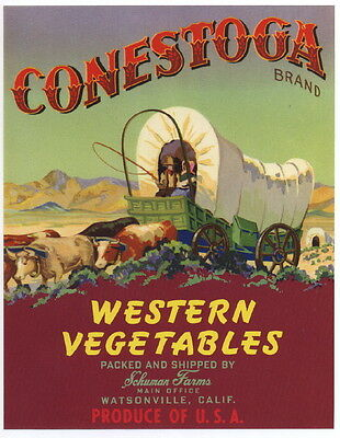 CONESTOGA Vintage Vegetable Crate Label, Western, Wagon, AN ORIGINAL LABEL!!!!