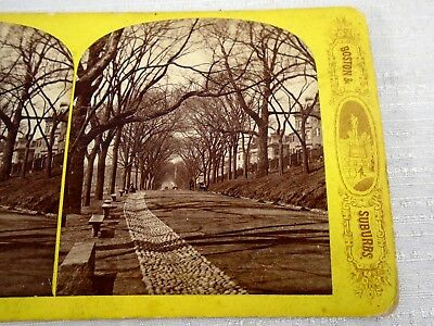 Stereoview Card America Illustrated Boston & Suburbs Boston Common 1300 Trees