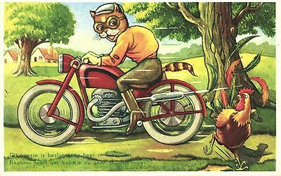cat driving motorcycle scared chicken comic artist postcard