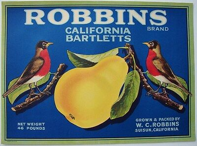 ROBBINS Vintage Suisun Pear Crate Label, Red Robin Bird, ***AN ORIGINAL LABEL***