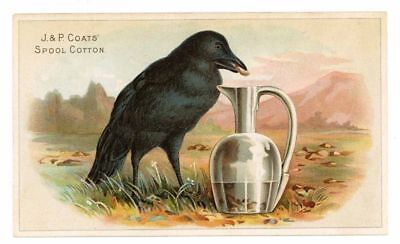 J. P. COATS Spool Cotton,  Victorian Trade Card, 325, Crow and Pitcher