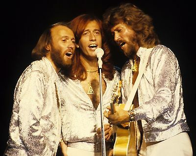 "Bee Gees 10"" x 8"" Photograph no 1"
