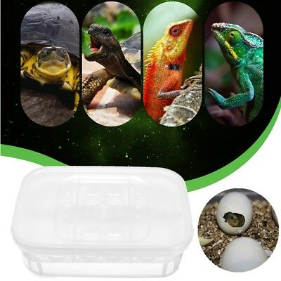 12 Grid Reptile Eggs Incubator Tray Lizard Gecko Snake Bird Egg Hatcher Box Case