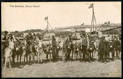 BEACH DONKEYS, BARRY ISLAND, Glamorgan. Valentine's 1910 pc.