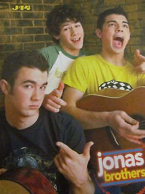 The Jonas Brothers, Pink, Double Full Page Pinup