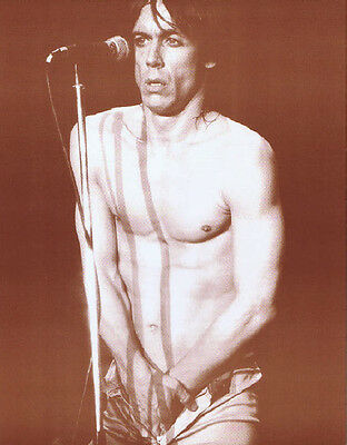 """Iggy Pop Poster Print - Young Iggy Photo - Touching Himself - 11""""x14"""" Sepia"""