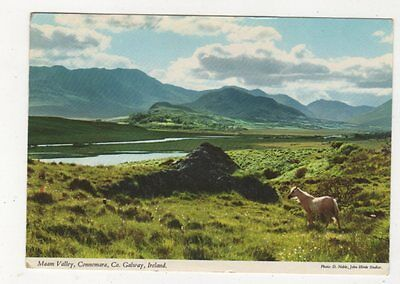 Maam Valley Galway Ireland Postcard 988a