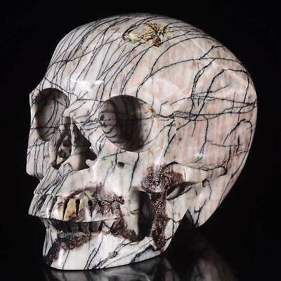 "4.92"" Natural Picasso Jasper Hand Carved Human skull/ Head,collectibles#24H90"