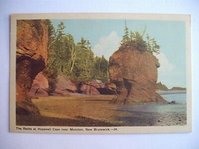 Rocks At Hopewell Cape Moncton New Brunswick Canada Vintage Postcard