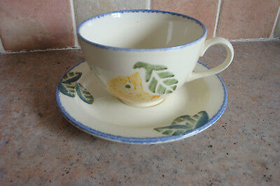 Poole Pottery Dorset Fruits Oranges Cup & Saucer - Handpainted