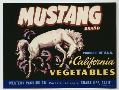 MUSTANG Vintage CA Vegetable Crate Label s, Horse, Western, *AN ORIGINAL LABEL*