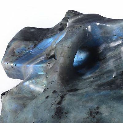 """8.98"""" Natural Labradorite Hand Carved Container skull/ Head,collectibles#24K17"""