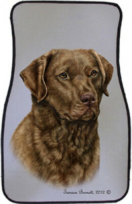 Car Floor Mats Pair - Chesapeake Bay Retriever 36070