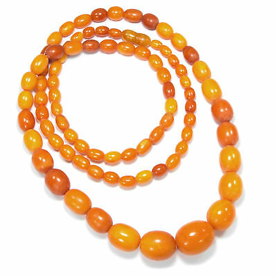 1930: 50g Butterscotch Amber Necklace Eggyolk Amber Olives Amber Chain, 老琥珀