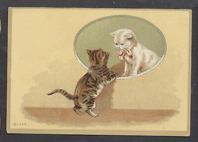 C8402 Victorian Blank Greetings Card: 2 Cats