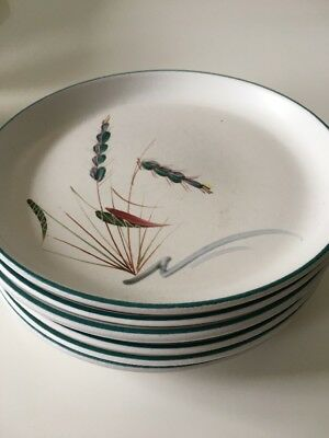 6 x Denby Greenwheat - Tea / Side  Plates - 6.5""