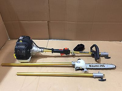 Pole Chainsaw Chain Saw Pruner Petrol Pro Arbor Tree Tool Cutter