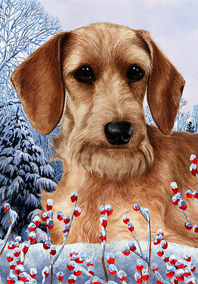 Garden Indoor/Outdoor Winter Flag - Wirehaired Dachshund 151371