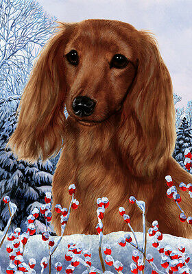 Garden Indoor/Outdoor Winter Flag - Longhaired Red Dachshund 151381