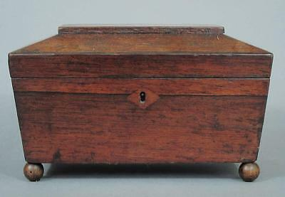 PIX!BEAUTIFUL ANTIQUE REGENCY SARCOPHAGUS SHAPED TEA CADDY 1830 box casket  13