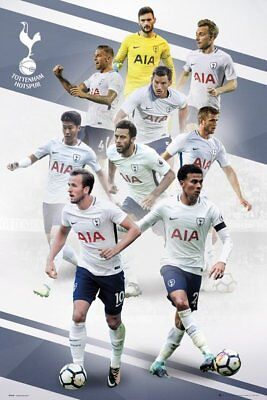 Tottenham Hotspur FC Poster - Players 17/18 - New Spurs Football poster SP1443