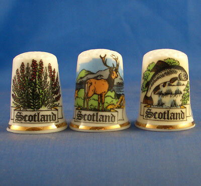 Fine Porcelain China Thimbles - Set Of Three Scotland Souvenir