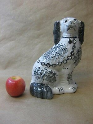 "Antique Staffordshire Mantel / Wally Dog ~ Spaniel ~ Black & White ~ 10"" Tall"