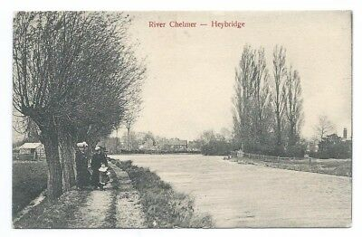 1906  View Of The River Chelmer At Heybridge, Ladies Using Towpath, B&w Pc