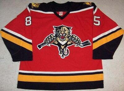 2005-06 Rostislav Olesz Florida Panthers Game Used Worn Reebok Jersey! MeiGray